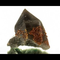 "5.8"" Sparkling Orange SPESSARTINE GARNET Crystals on SMOKY QUARTZ China for sale"
