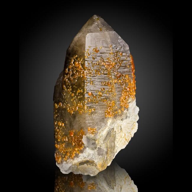 "8.1"" Orange SPESSARTINE GARNET Crystals on SMOKY QUARTZ Crystal China for sale"