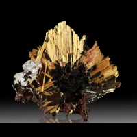 "1.7"" Golden Needle Sunburst RUTILE Crystals Epitaxic on HEMATITE-Brazil-for sale"