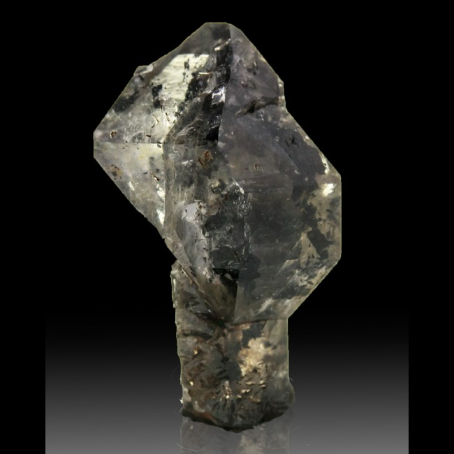 ".9"" Clear HERKIMER DIAMOND Sceptered on Black Stem Treasure Mountain NY for sale"