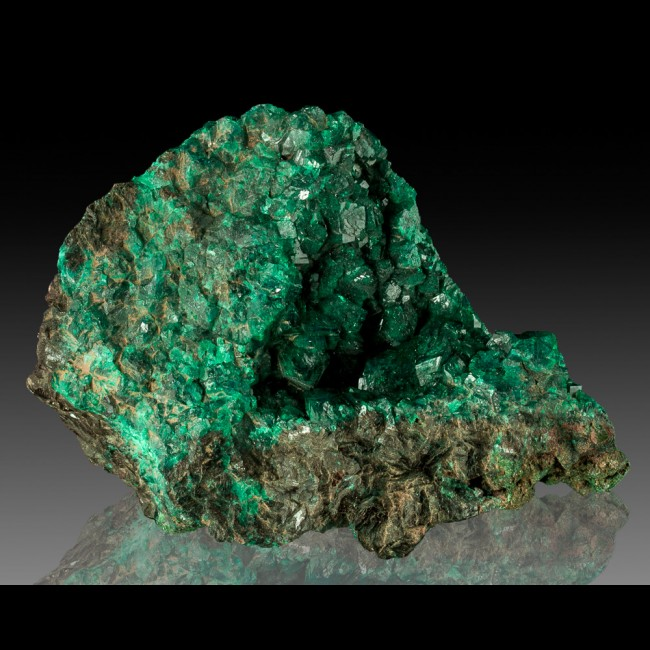 """4.4"""" Highly Lustrous Vivid Green DIOPTASE Crystals to .6"""" in Vug Congo for sale"""