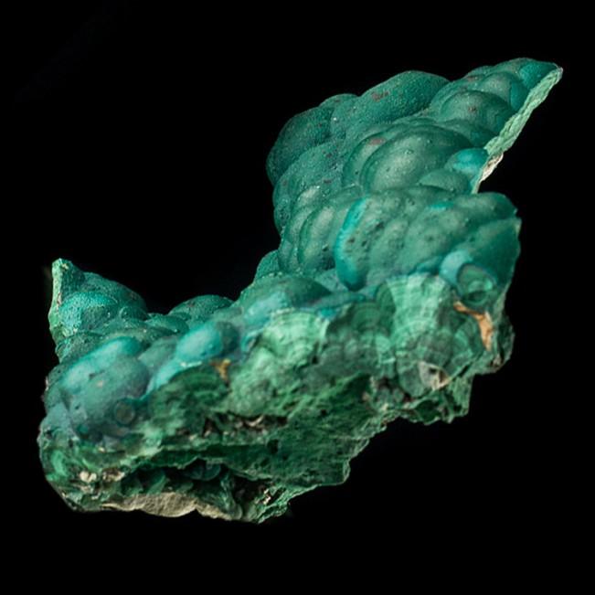 "5.4"" 3-D Lustrous Botryoidal BUBBLE MALACHITE Crystals Pristine Congo for sale"