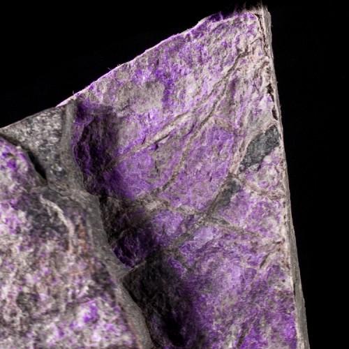 "4.1"" 296g Super Saturated Grape Purple SUGILI..."