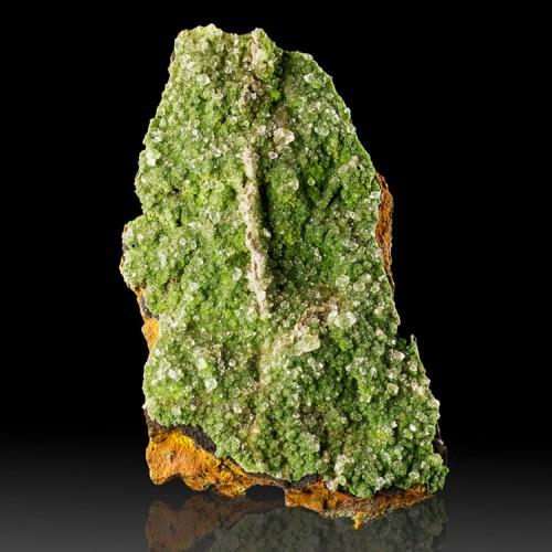 """4.2"""" Forest Green CONICHALCITE Crystals w-Gem..."""