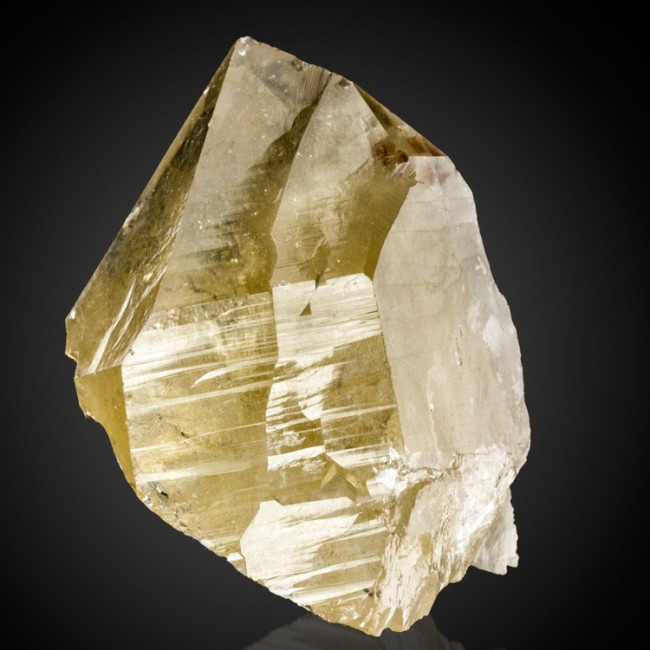 "3.9"" Glossy CITRINE QUARTZ Crystal w/ReHealed Base+Cleavelandite Brazil for sale"