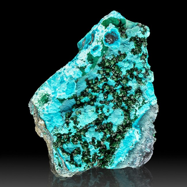"""4.9"""" Botryoidal Turquoise CHRYSOCOLLA w/Green MALACHITE Crystals Congo for sale"""