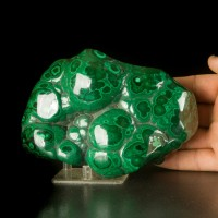 """6.2"""" Concentric Bulls Eyes Light & Dark Green Polished MALACHITE Congo for sale"""