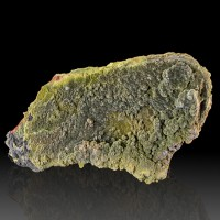 "8.1"" Dark Olive Green Botryoidal MOTTRAMITE Crystals on Limonite Mexico for sale"