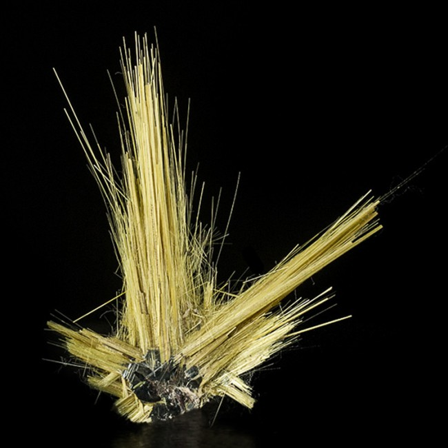 "1.9"" Gold RUTILE Crystal Needles to 1.5"" Epitaxial on HEMATITE Brazil for sale"
