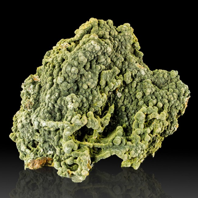 """5"""" DownyFuzzy-Look Midnight Green Botryoidal MOTTRAMITE Crystals Mexico for sale"""