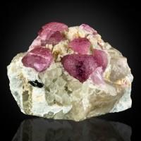 "2.1"" Raspberry Pink MUSHROOM TOURMALINE Sharp Trigonal Crystals Burma for sale"