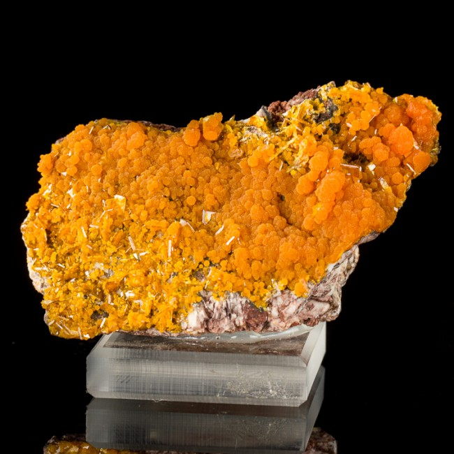 "2.9"" Clear WINDOWPANE WULFENITE Crystals w/Orange MIMETITE Rowley M AZ for sale"