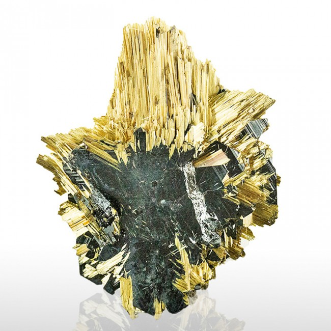 "1.6"" Fine Radiating GOLDEN RUTILE Epitactic on HEMATITE Crystals Brazil for sale"
