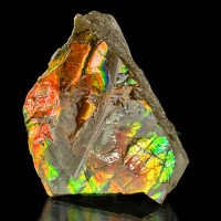 "2.8"" FlashyShimmering Luminous DayGlow Red+Green AMMOLITE Fossil Canada for sale"