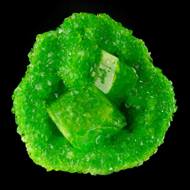 """6.8"""" Neon Green BOUSSINGAULTITE Crystals to 3.5"""" Inside Geode Germany for sale"""