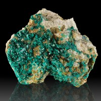 "3.6"" Flashy Wet-Look Vivid Green DIOPTASE Sharp Edged Crystals Congo for sale"