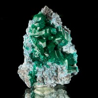 "1.5"" Pristine Gemmy DIOPTASE Sharp Crystals to 8mm WetLook Luster Congo for sale"