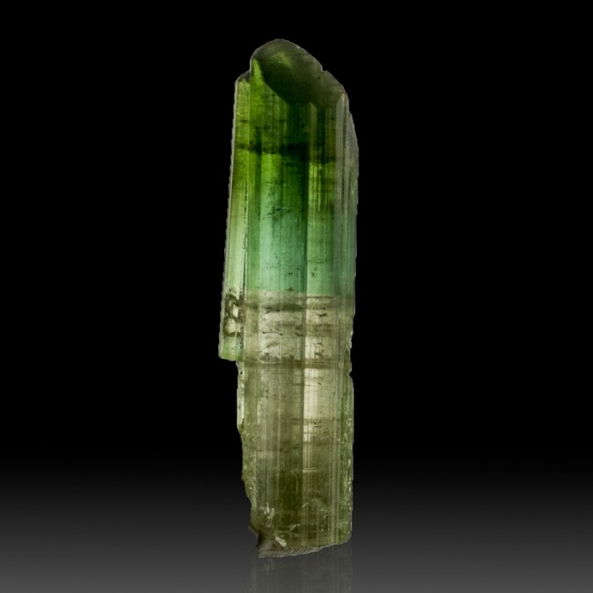 "1.2"" 14ct Gemmy Tri-Color Green ELBAITE TOURMALINE Crystal Afghanistan for sale"