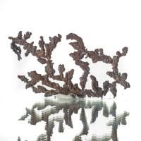 "2.5"" Arborescent COPPER CRYSTALS Spinel-Law Twins ""Floater"" Kazakhstan for sale"