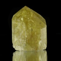 "1.5"" Golden Yellow APATITE Terminated Crystal w/ Wet-Look Luster Mexico for sale"