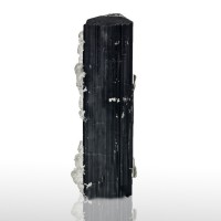 "3.4"" Wet-Look Jet Black TOURMALINE w/Albite Coating on 1 Side Pakistan for sale"