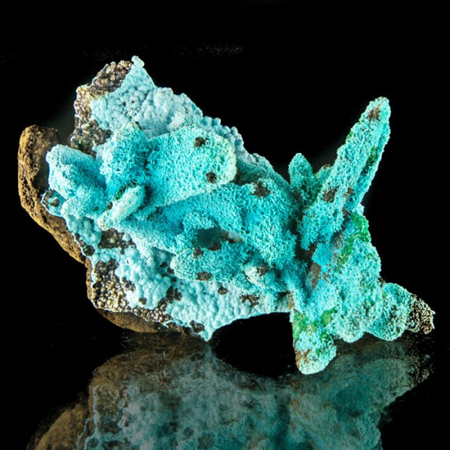 "2.2"" Neon Turquoise CHRYSOCOLLA Crystals Pseudo Malachite/Azurite Congo for sale"