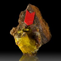".7"" Bright Yellow LEGRANDITE Superb Spray Shiny Crystals in Vug Mexico for sale"