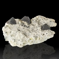 "4.1"" Octahedral Black MAGNETITE Crystals to 3/4"" in Matrix Australia for sale"