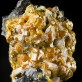 "1.4"" OrangeGold CAMPYLLITE Crystals Var. of Mimetite Dry Gill M England for sale"