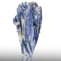 "6.5"" Indigo Blueberry Blue KYANITE Lustrous Crystals w/Quartz Brazil for sale"
