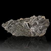 "6.8"" Rich BLACK KYANITE Radiating Crystal Fans Pristine Floater Brazil for sale"