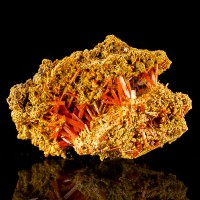 "2.7"" West Comet Mine CROCOITE Red Terminated Crystals in Vug Tasmania for sale"