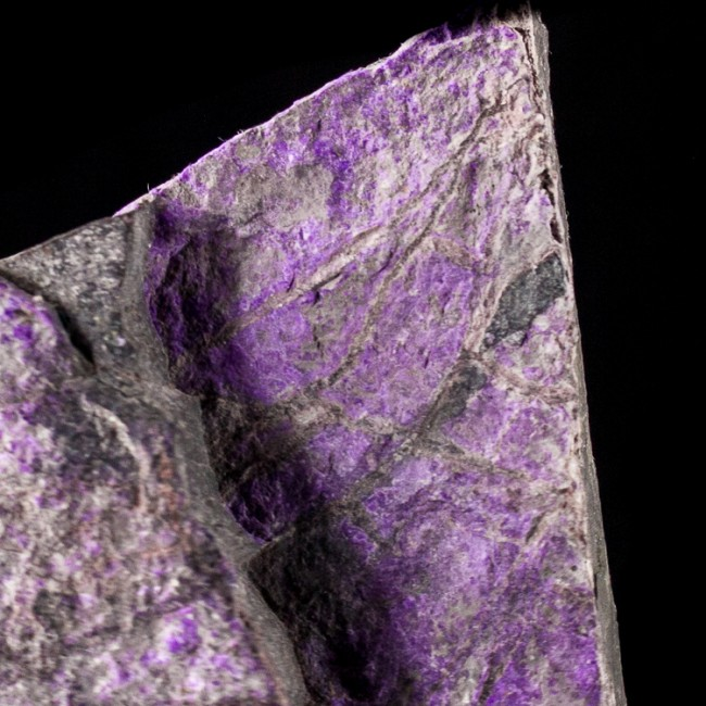 "4.1"" 296g Super Saturated Grape Purple SUGILITE in Veins South Africa for sale"