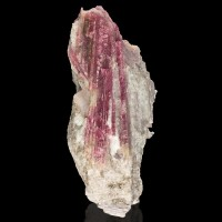 """5.6"""" Colorful Magenta PINK TOURMALINE Crystals in Milky Quartz Brazil for sale"""