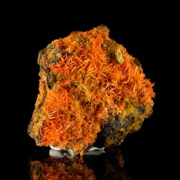 "3.3"" CROCOITE CRYSTALS Bright Shiny Red Orange Color on Matrix Tasmania for sale"