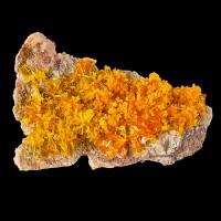 "1.9"" Tabular Orange WULFENITE Crystals +Light Orange MIMETITE Rowley AZ for sale"