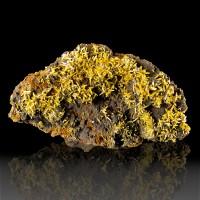 "4.5"" BIPYRAMIDAL WULFENITE GoldenOrange Crystals +Gray MIMETITE Mexico for sale"