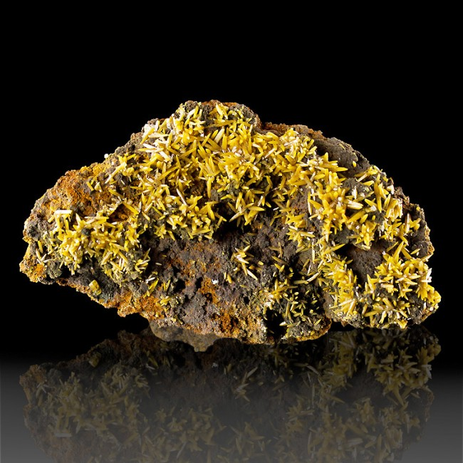 "4.5"" BIPYRAMIDAL WULFENITE GoldenOrange Crystals +Gray MIMETITE Mexico for sale"