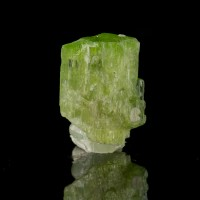 ".7"" 9.9ct Lime Green Gemmy CHROME TREMOLITE Crystal Merelani Tanzania for sale"