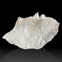 "4.6"" Clear-to-White Radiating HYDROBORACITE Crystals on Matrix Germany for sale"
