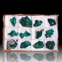 Wholesale Flat 12 pieces Iridescent Green SILKY MALACHITE Congo @$20 for sale
