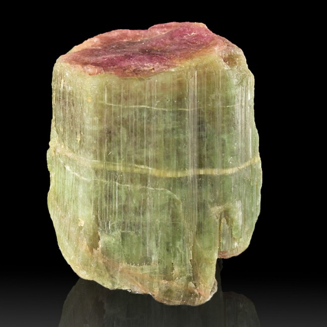 "1.5"" 245ct Colorful Green&Red Core WATERMELON TOURMALINE Crystal Brazil for sale"