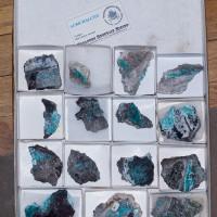 Wholesale Flat 15 pieces Neon Turquoise AURICHALCITE Crystals Chile @$7 for sale