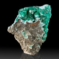 "2.5"" Brilliant Wet-Look Gem Green DIOPTASE Crystals w-Shattuckite Congo for sale"