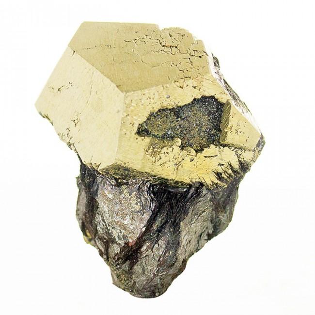 "1.9"" Pyritohedral PYRITE Crystal on Metallic HEMATITE Elba Island Italy for sale"