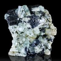 "3.1"" Dozens of Gem Blue AQUAMARINE Crystals on Black Schorl Namibia for sale"