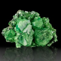 "5.4"" Emerald Green Lustrous Gemmy ALUM Crystals to 2.1"" onMatrix Poland for sale"