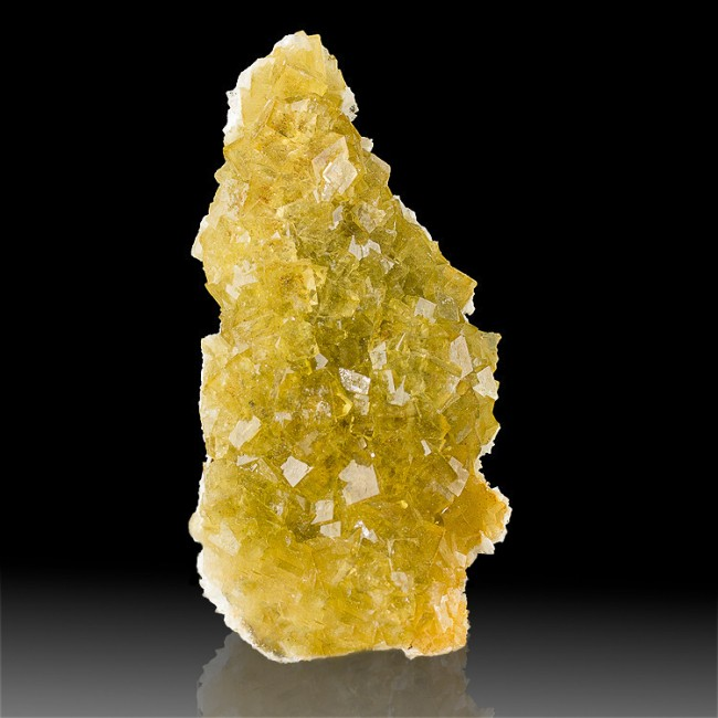 "4.4"" GlassyWetLook Gem Clear Cubic Golden YELLOW FLUORITE to.5"" Morocco for sale"