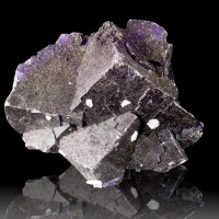 "4"" Shiny Blue Violet Plum Purple Cubic FLUORITE Crystals Muzquiz Mexico for sale"