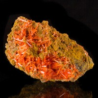 "2.8"" Sharp Bright Candy Red Needle Crystals of CROCOITE Adelaide Mine for sale"